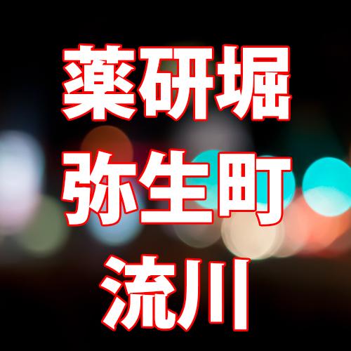 薬研堀・弥生町・流川