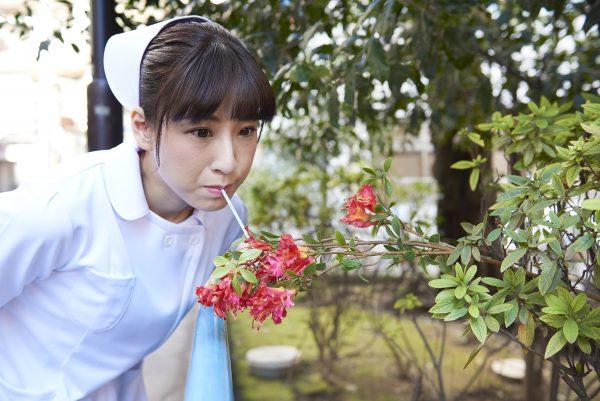 花の蜜を吸う看護師