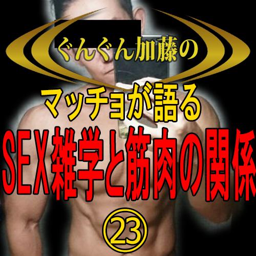 マッチョが語る!セックス雑学と筋肉の関係㉓