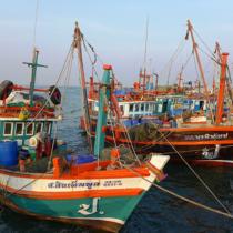 シラチャは漁師の街でもある。シーフード&ビールが王道だ