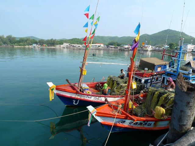 サタヒップは漁村だ。海とともに生きる暮らしを垣間見られる
