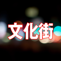 日本の風俗街