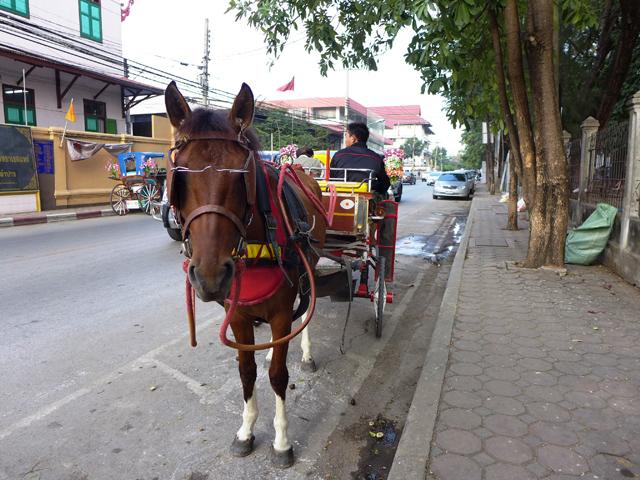北部ランパーンの街では馬車が走っていた。旧市街をめぐる観光用だ