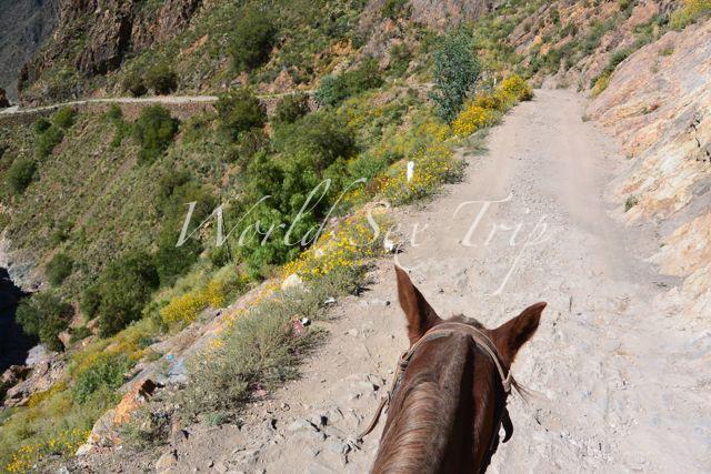 細い山道。左側は崖