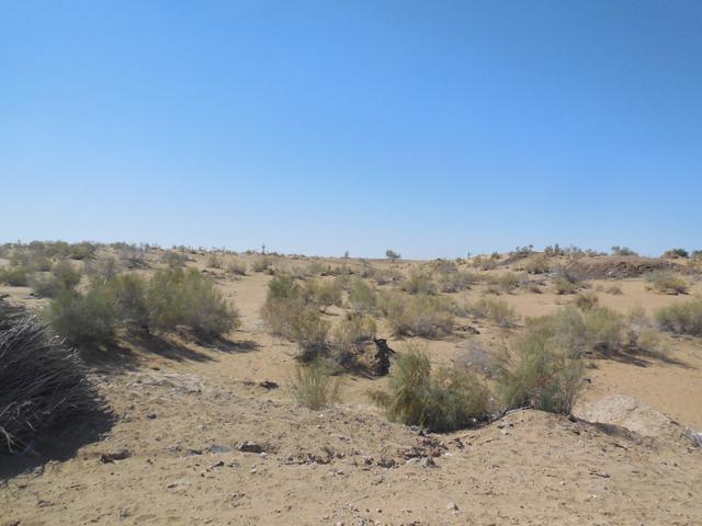 ヒヴァに移動中の景色。 砂漠ばかりの景色で次第に飽きてくる。